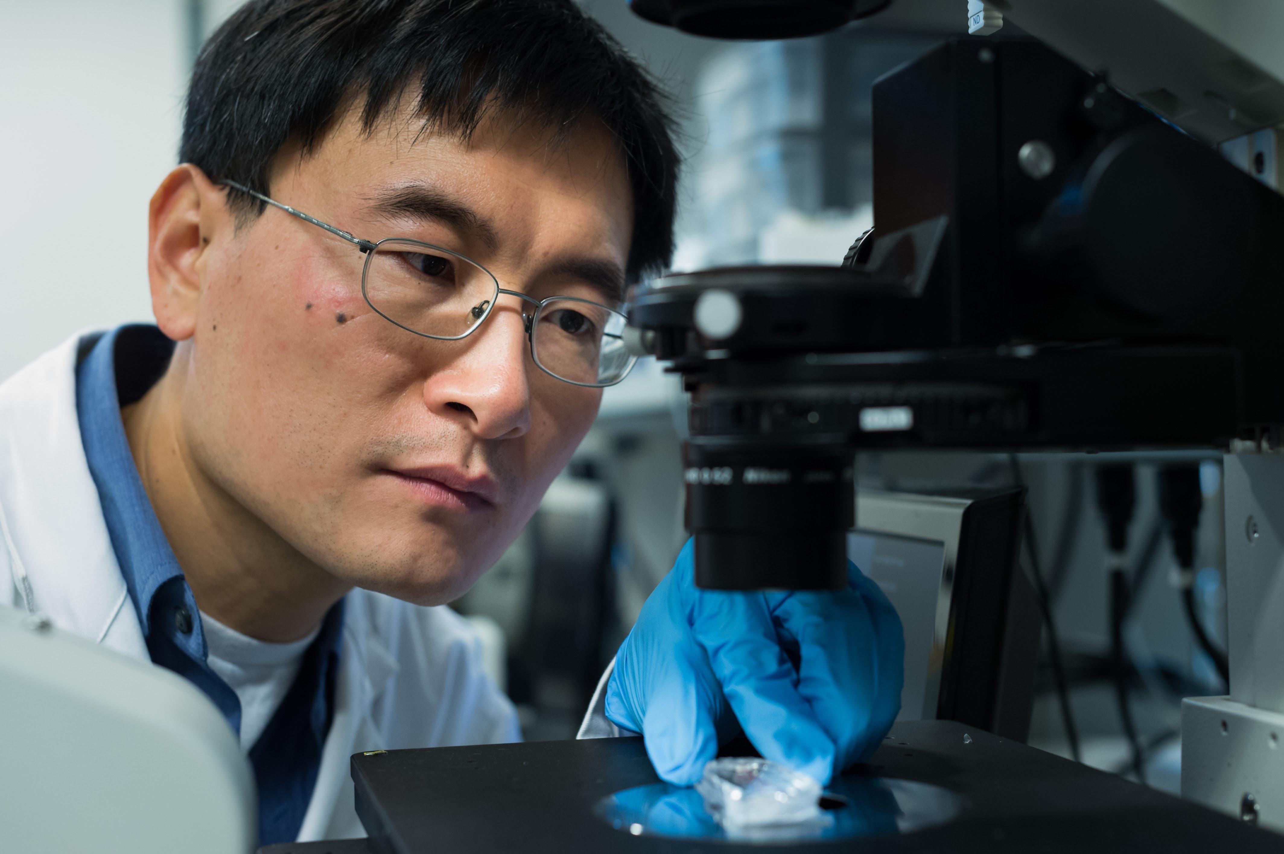 Dr. Hongshen Ma inspects a microscope.